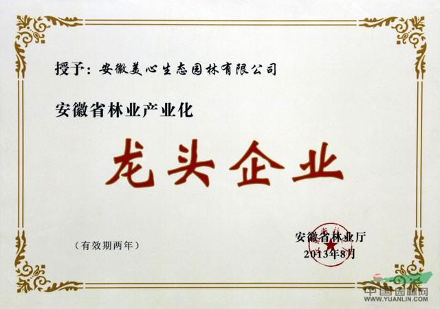 安徽省林业产业化龙头企业